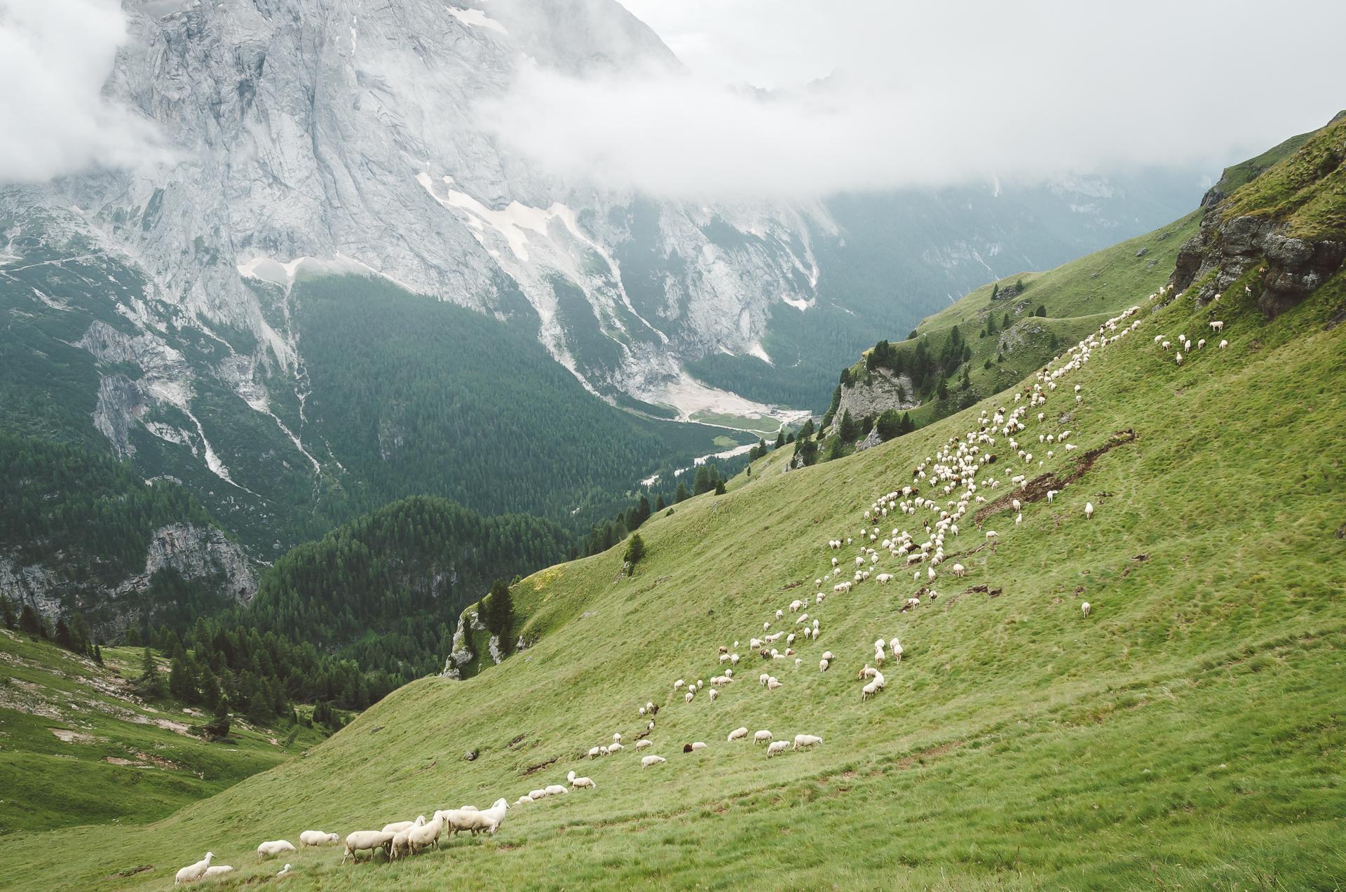 Passo di Fedaia, Val di Fassa, Italy, Travel, Canazei