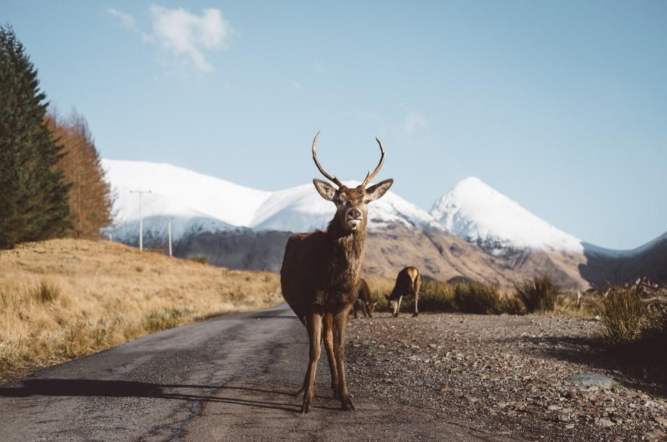 From Glencoe to Isle of Skye
